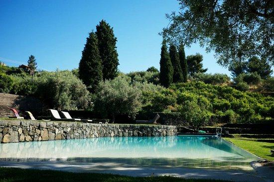 Monaci delle Terre Nere: Pool