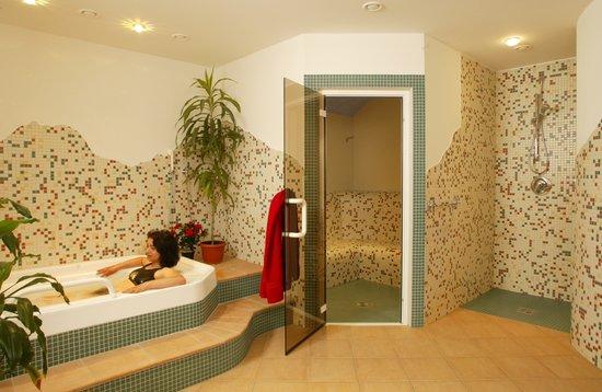 Hotel Mignon: Sauna