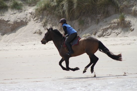 Seahouses, UK: Beach Ride June 2013