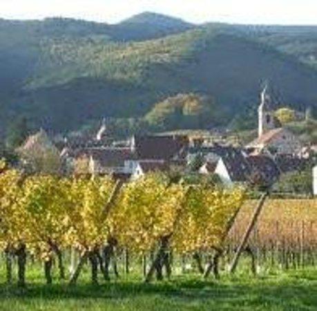 La Maison Bleue : Un charmant village dans le vignoble