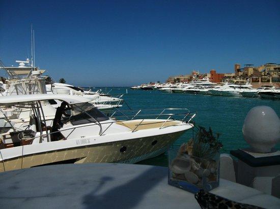 Maritim Restaurant: View from Maritim