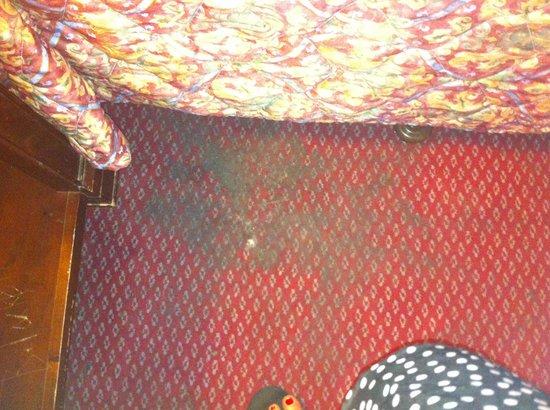 Econo Lodge: Carpet