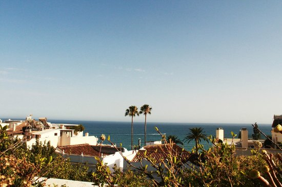 Hotel Plaza Cavana: View from the rooftop pool