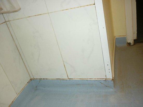 B&B Hotel Poitiers 2 : Mur de la salle de bain