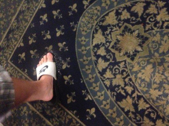 SureStay Plus Hotel Pensacola: Floor flooded