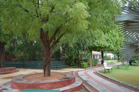 Vivanta by Taj - Sawai Madhopur Lodge: Encompassing green