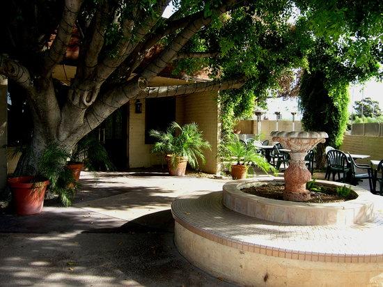 Riazzi's Italian Garden: Riazzi's courtyard