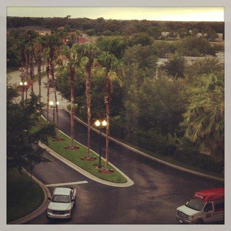 Orlando Marriott Lake Mary: View from my room!