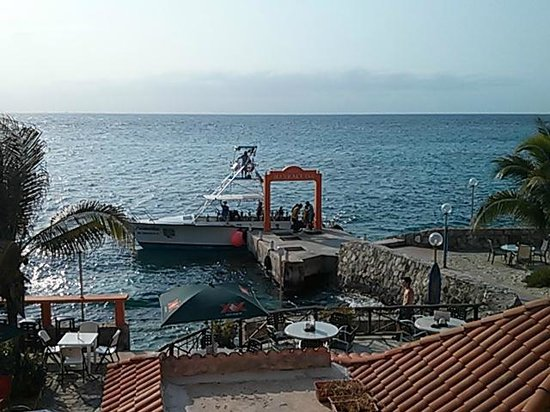Barracuda: Dive boat at dock