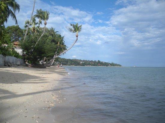 Weekender VIlla Beach Resort : Looking Nth from the beach