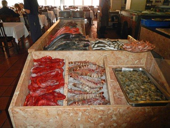 Mercado do Peixe : what a display of freshness