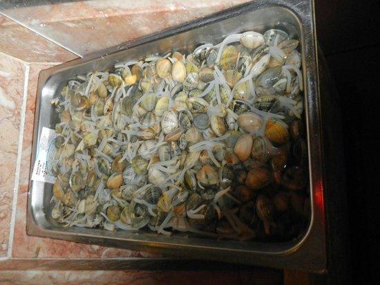 Mercado do Peixe : life clams