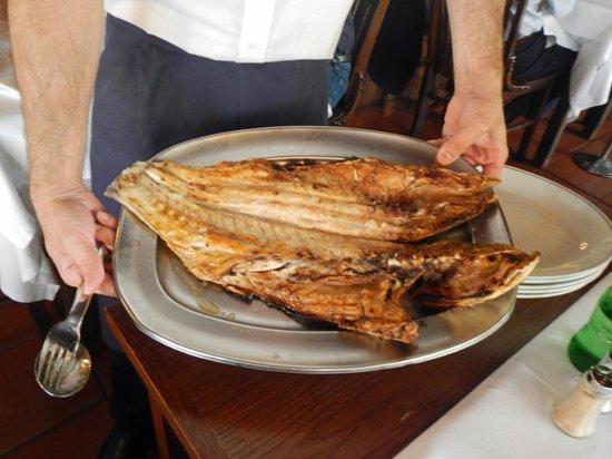 Mercado do Peixe : Robalo fish grilled on the open fire