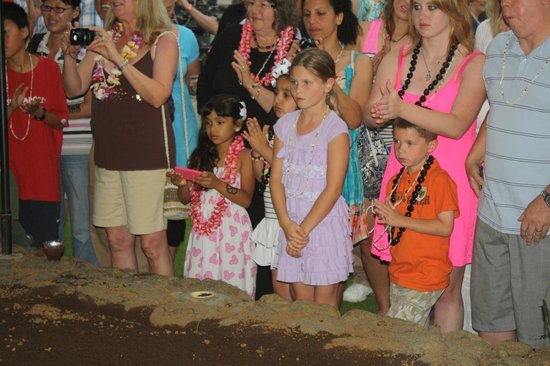 Island Breeze Luau at the King Kamehameha Hotel: watching the pig being pulled out of the fire pit