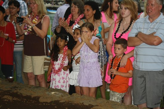 Island Breeze Luau at the King Kamehameha Hotel: looks of horror as pig is brought out of the ground