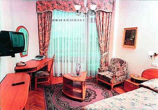 Kiev Hotel: Guest Room