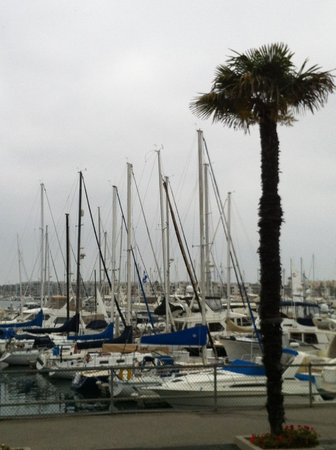 Tony P's: Sit on the patio for great views of the marina.
