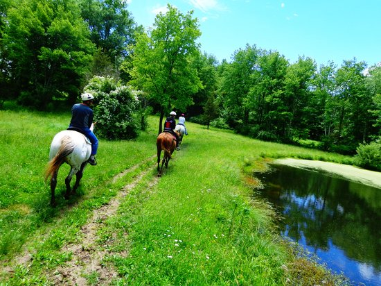 Juckas Stables: We have beautiful trails - over 117 acres of land.