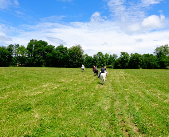 Bullville, Estado de Nueva York: Open fields to have fun in.