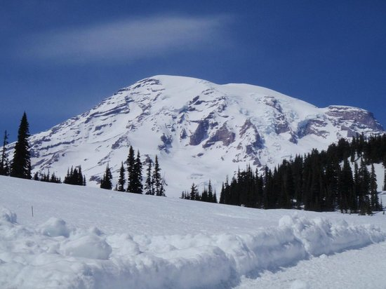 Almost Paradise Lodging: Mt. Rainier from Paradise