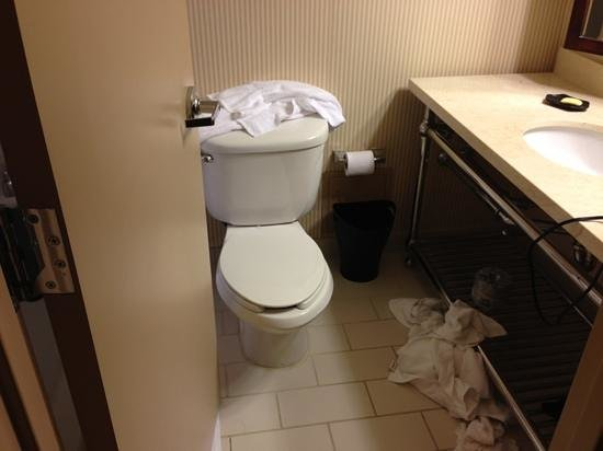 Sheraton Arlington Hotel: Bathrooms are supper small on for a deluxe room. This has to be the smallest bathroom at a Shera