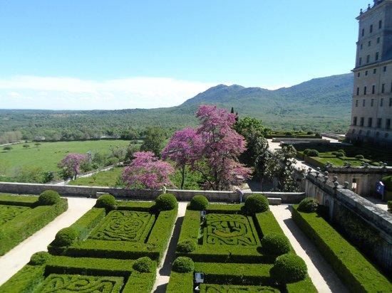 jardines del escorial picture of monasterio y sitio de