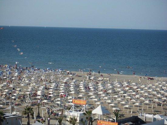 Tortuga beach bagno 67 rimini restaurant avis num ro de t l phone photos tripadvisor - Web cam rimini bagno 55 ...