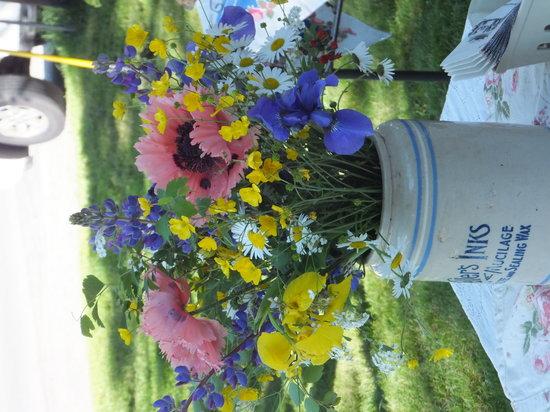 Betsy's Sunflower: fresh cut flowers in season