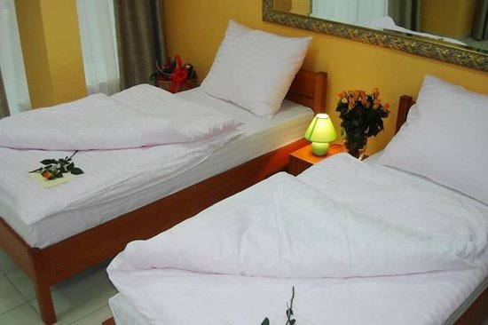 Hotel Max: Guest Room