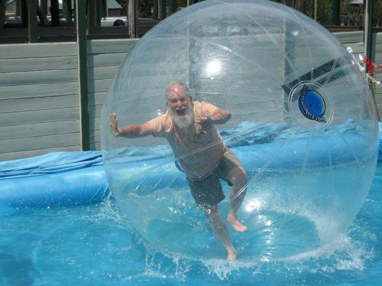 Amaze'n Steamboat Family Fun Park: Water Walkerz...family fun wrapped up in a bubble!!