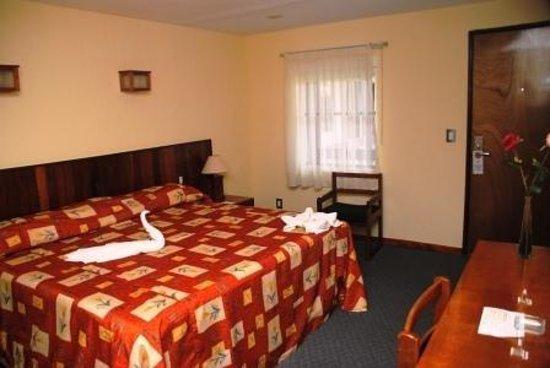 Hotel Los Andes: Guest Room
