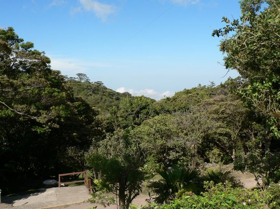 Monteverde Cloud Forest Lodge: on a clear day you can see the Pacific Ocean