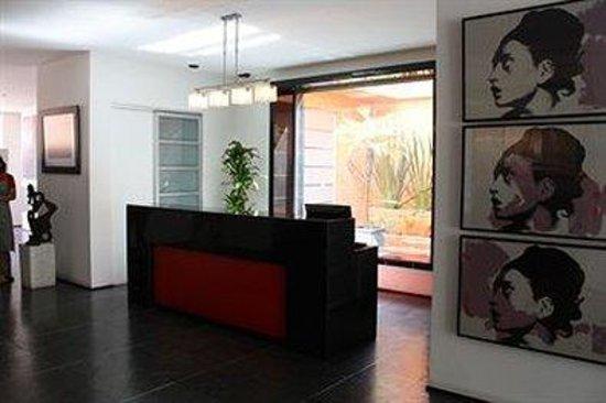 Casa 95: Reception