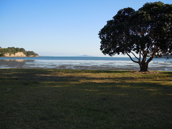 Okoromai Bay Bed & Breakfast: Taken at Okoromai Bay