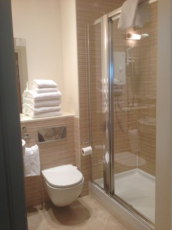 Princes Street Suites: main bathroom