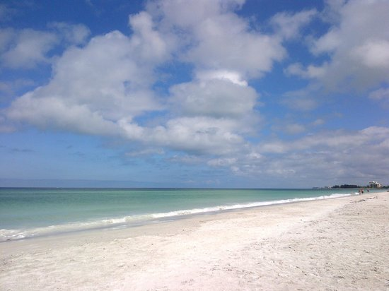 Sarasota Sands: Beautiful Beach!