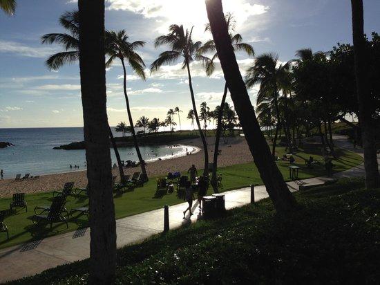 Longboards Bar & Grill: Paradise