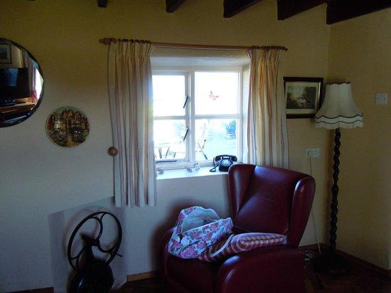 Kilcannon House Bed & Breakfast: Living room area