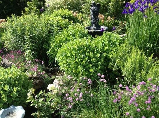 Le Point de Vue: flowers in the gardens