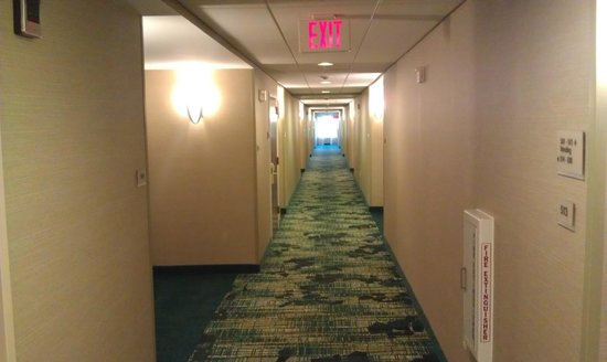 SpringHill Suites Boston Peabody: bright hallway