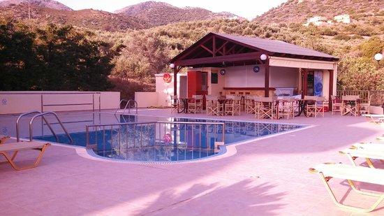 Elpis Studios and Apartments : Le bar et la piscine