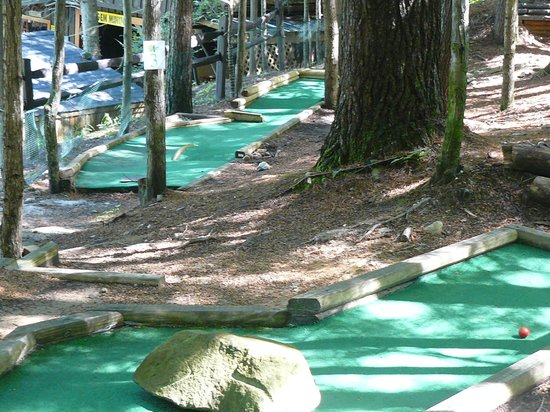The Lilly Pad Village: The mini golf is set on a wooded hillside.