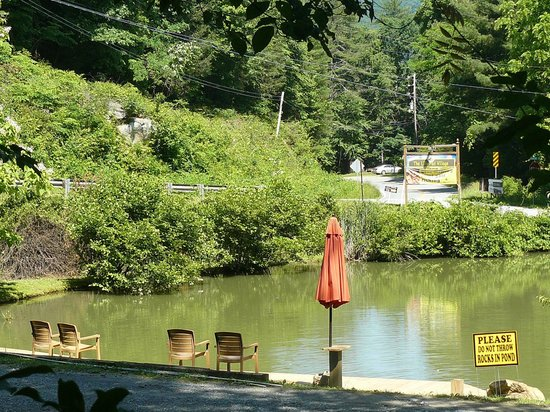 The Lilly Pad Village: You can fish in the pond.