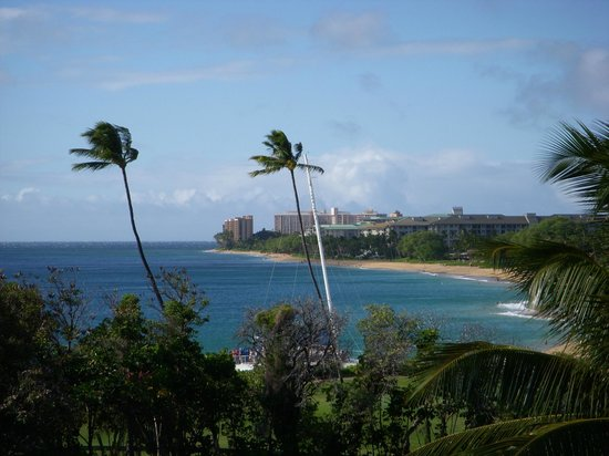 Sheraton Maui Resort & Spa: Sheraton Maui Resort