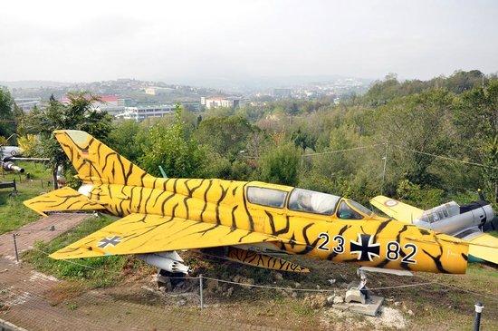 Parco Tematico dell'Aviazione : Mig