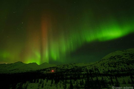 Alpine Creek Lodge: Incredible Northern Lights (aurora borealis)