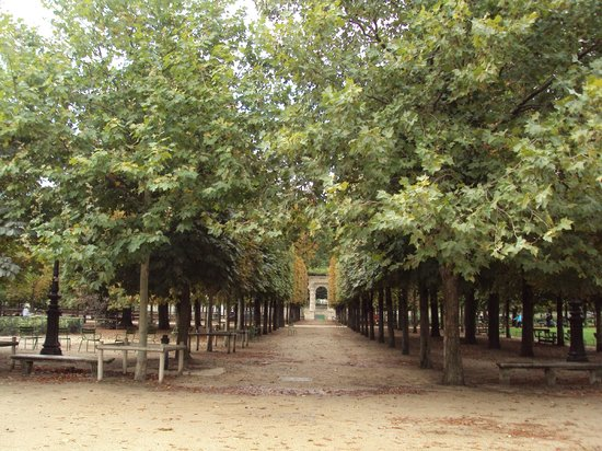 Mai 2013 picture of jardin des tuileries paris for Jardin jardin tuileries