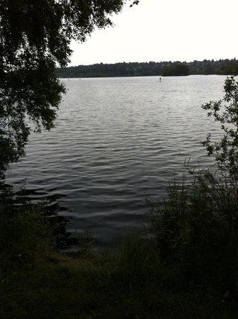 Woodmark Hotel & Still Spa : Walking Along Lake Washington Near Hotel