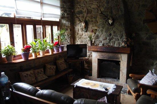 Posada Las Espedillas: Living Area
