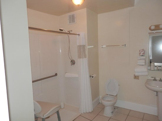 Travelodge Hotel Downtown Chicago: Bathroom (Accessible Room)